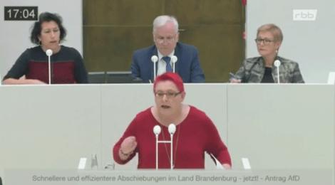 Rede zu den Anträgen von AfD und CDU zu schnelleren und effizienteren Abschiebungen