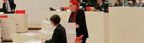 Rede zum Gesetzentwurf der AfD zur Abschaffung des Paritégesetzes