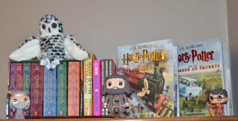 Harry Potter and the Collection of Books