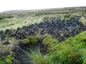 Turf, a layer of soil that is cut in blocks and after it is dried can be used for fires.