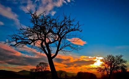 sunset-229335