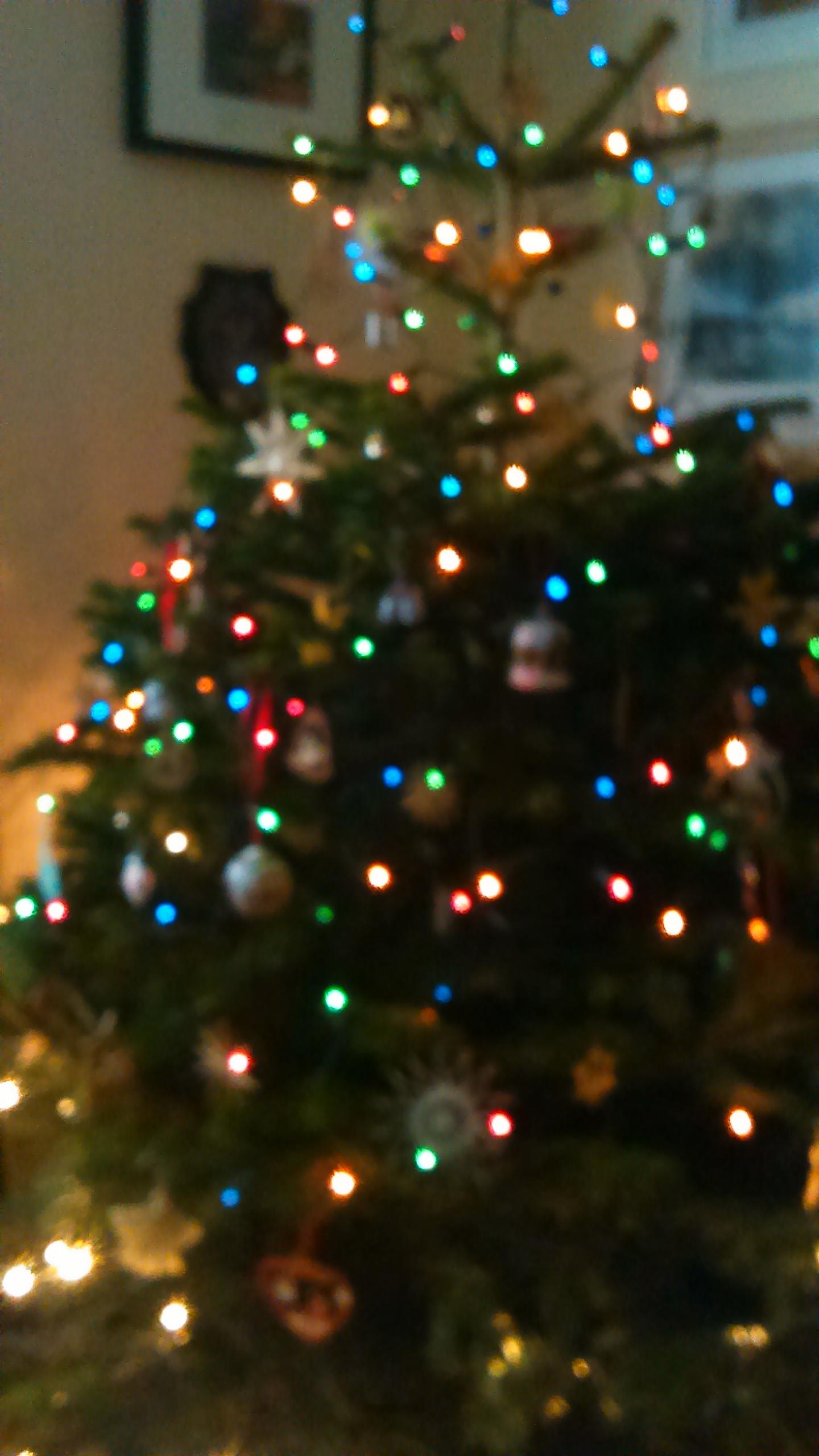 Tree in festive mood
