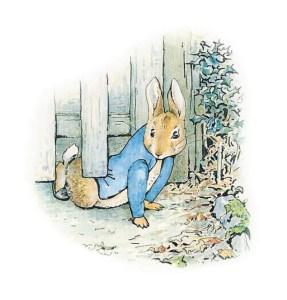 peter_rabbit-1338471357