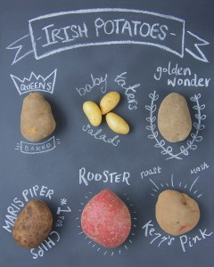 irish-potatoes-what-to-buy