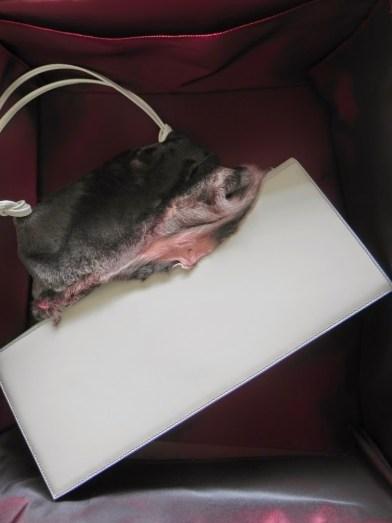 Pochette Bag by AJ   The Luxury Brand