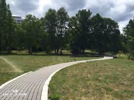 Botanischer Garten der Universität des Saarlandes 2015 Foto: Andrea Jaeckel-Dobschat