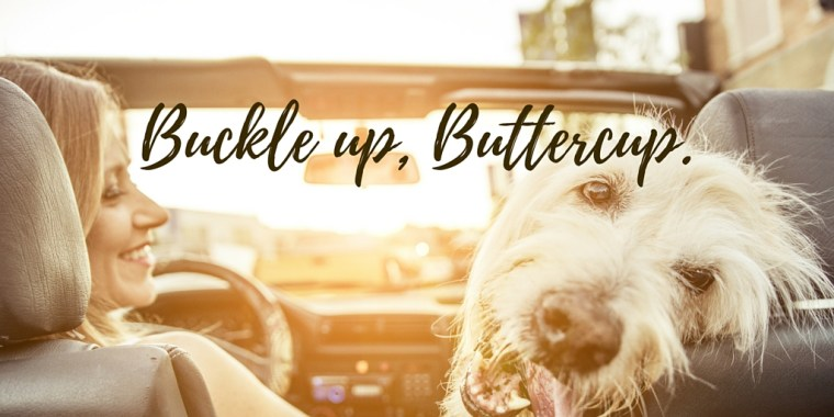 Buckle up, Buttercup.