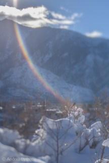 Winter-3