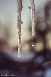 Icicles-3