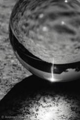 Crystal Ball Shots-15