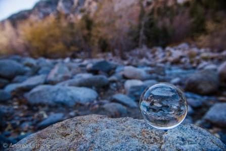 Crystal Ball Shots-8