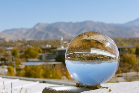SLC Refracted-1