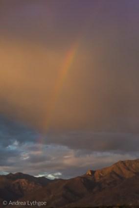 Velvet 85 rainbow-1