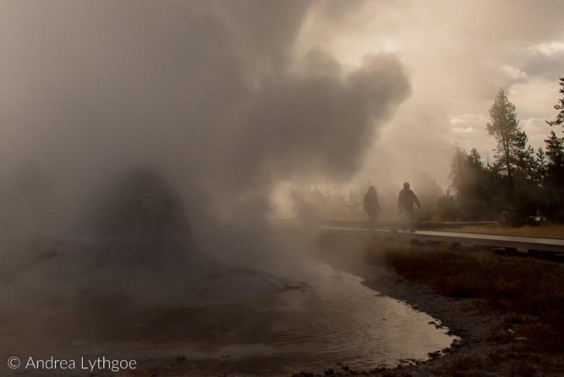 Yellowstone 2018 Big Batch-44