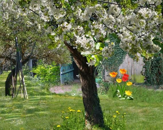 Ich + Tante Rosas Garten Frühling