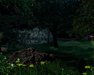 Garten Nacht 4