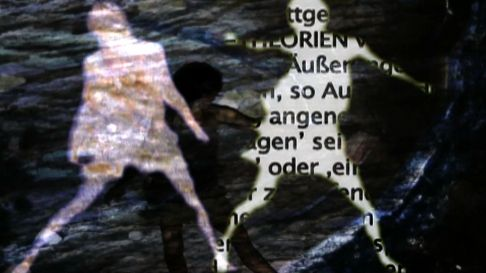 15Lemuren Stbd 1-41