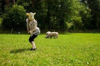 Das Lamm und der Wolf Session Brunn 05072014 FLICKR 048