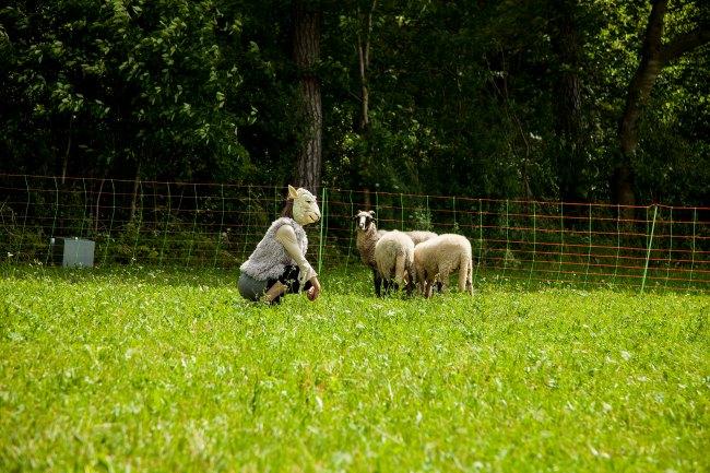 Das Lamm und der Wolf Session Brunn 05072014 FLICKR 051