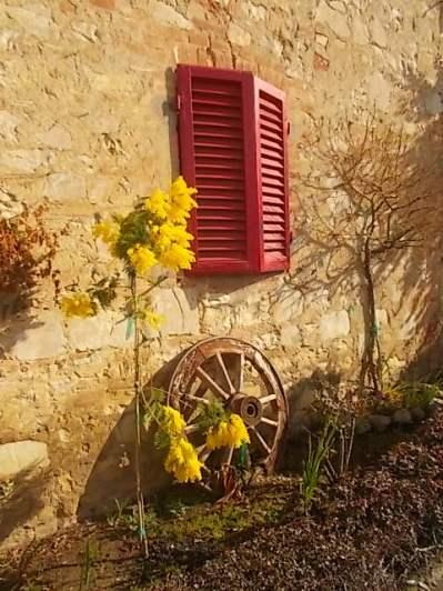 casa-dall-finestre-rosse-5