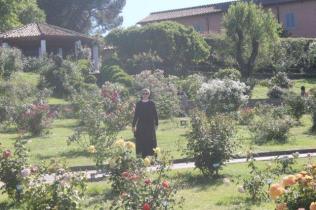 roseto di roma (31)