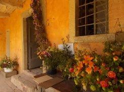 slow flowers podernovi chianti castello di brolio (29)