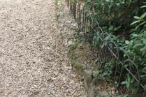 lizza siena degrado lago dei cigni (14)