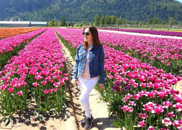 Chilliwack Tulip Fest travel guide