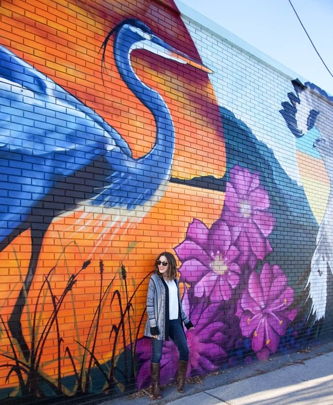 Mural featuring a heron, osprey and wolf in Penticton, B.C.