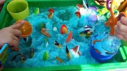 Fishy fun