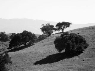 California B&W – Santa Barbara County