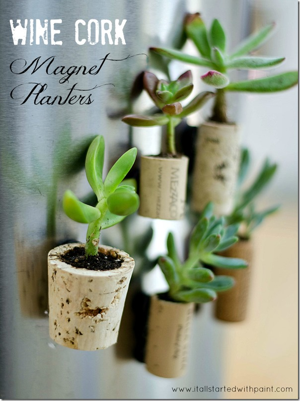 Wine cork succulent magnets! CUTE!