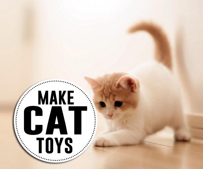 DIY cat toys to make!