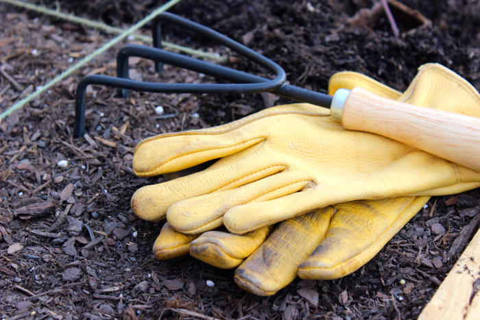 Tools to plant a garden