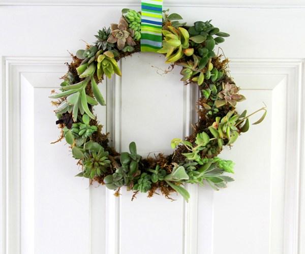 DIY succulent wreath tutorial - VIDEO