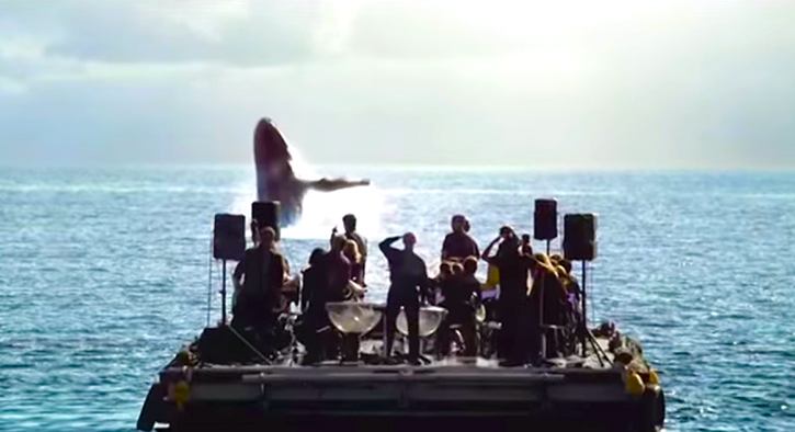 The orchestra performs for whales. What happened was breathtaking.