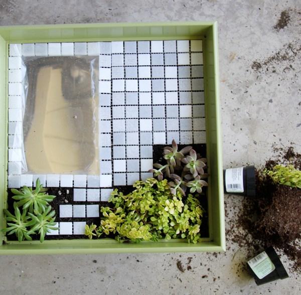 DIY Modern Fairy Garden