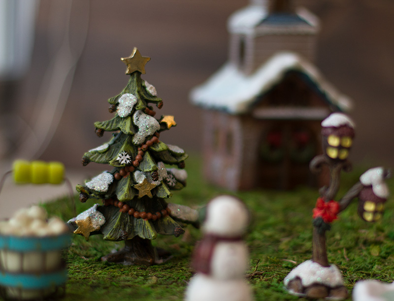 Make an adorable indoor fairy garden