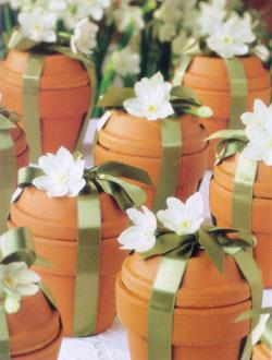 Bulb gifts
