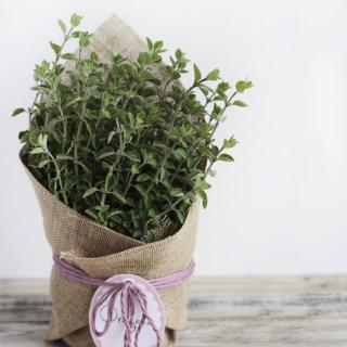 DIY hostess flower gift