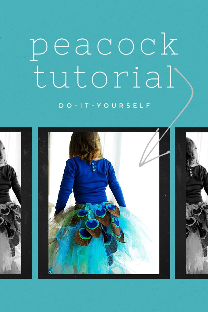 diy peacock tutorial
