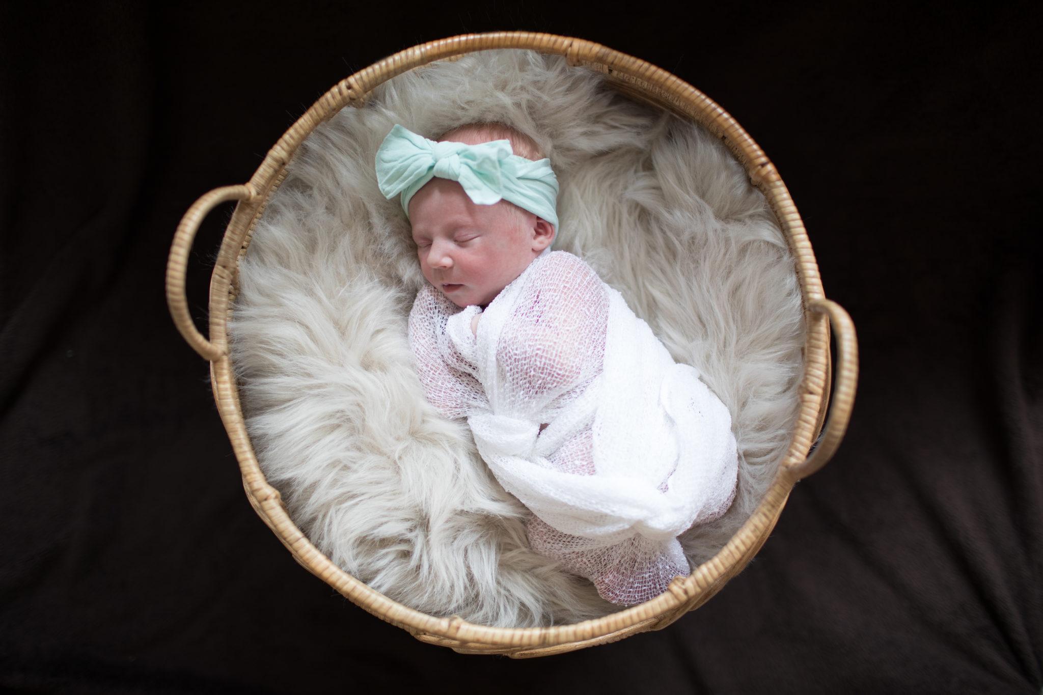 Savvy Stark Newborn Photography Breckenridge Colorado