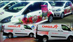 Autocolante pentru mașina care livrează detergenți la domiciliu