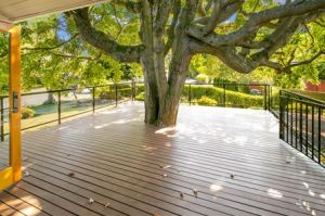 Tree with Deck