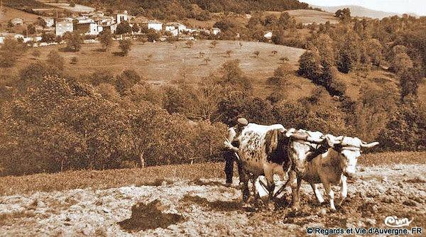 Auvergne De Ma Jeunesse Page 3