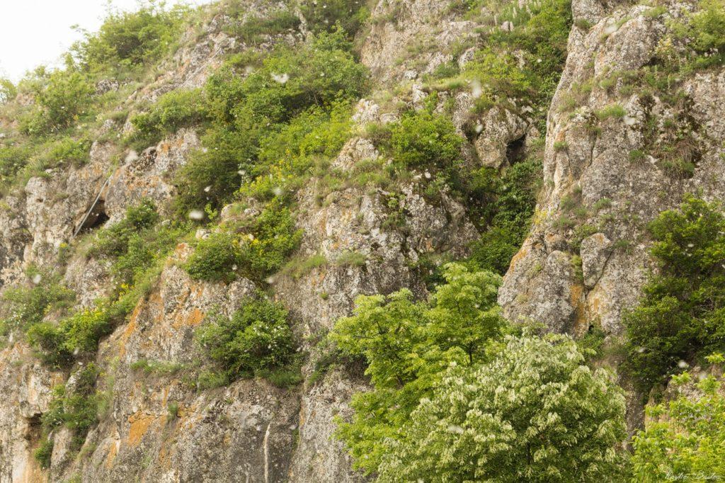 3 - Climb'n'Fluff in Basarbovo