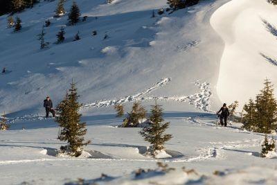 Iarna la Suru. Munții Făgărașului
