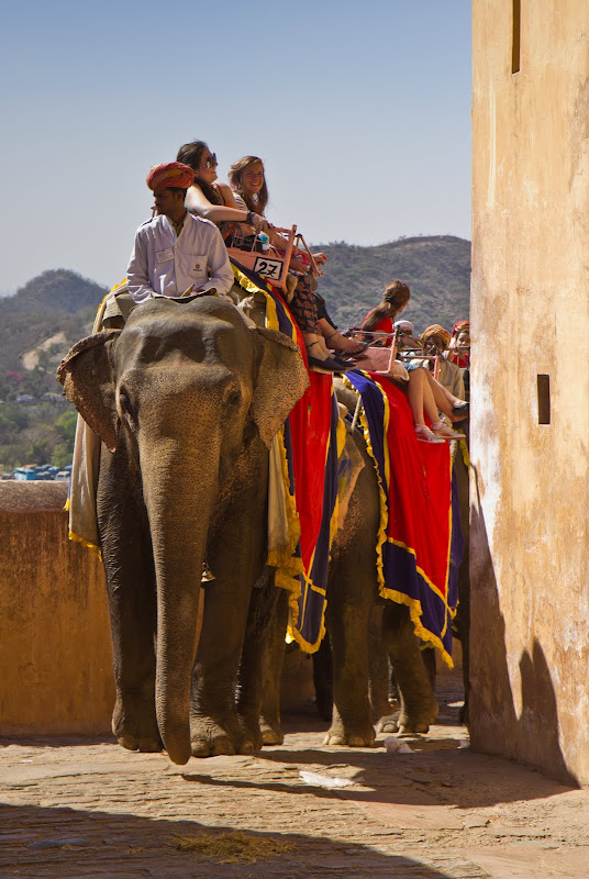Jaipur - the Amber fort