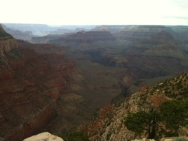 Grand Canyon - 23