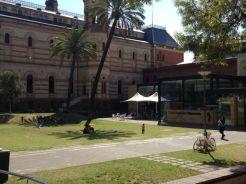 AASCF South Australia 2014 - 056